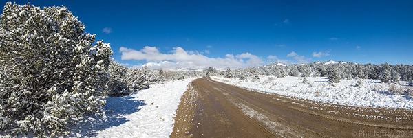 Snowy Pinyon-Juniper habitat near Buena Vista